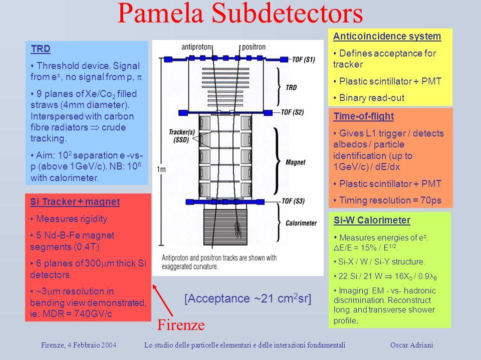 Pamela Subdetectors Firenze [Acceptance ~21 cm2sr]